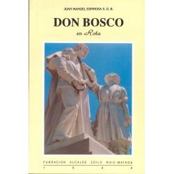 libro de rota: Don Bosco en...